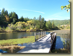 Mendocino County Real Estate, Cindy Lindgren - The Landlady, Black Bart Trail, Redwood Valley