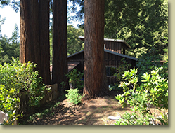 Ukiah Real Estate Sold by Cindy Lindgren -The Landlady, Holmes Ranch Road